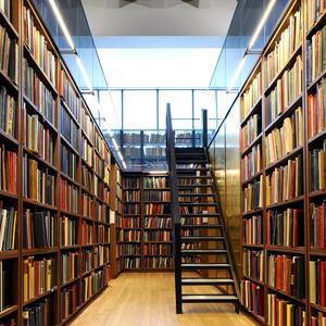 Библиотеки Майны