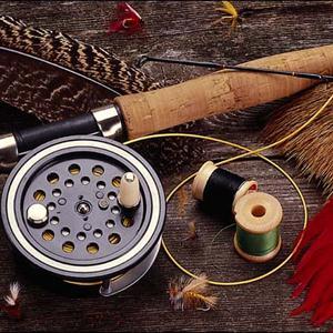 Охотничьи и рыболовные магазины Майны